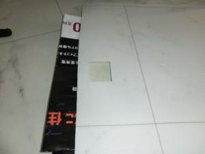 CIMG0395